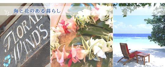 フローラル・ウインズ ~海と花のある暮らし~